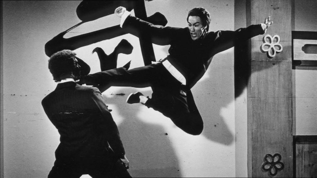 Kung fu bruce lee kicks