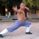 Shaolin forms 2