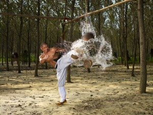 Shifu-Yan-Lei--breaking-skills