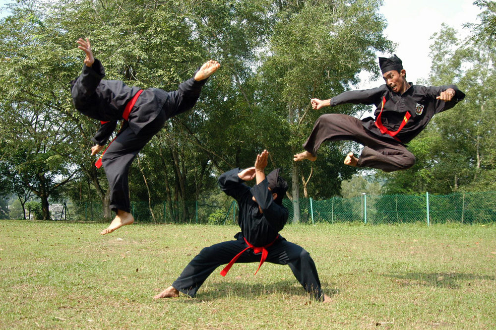 martial art of the month silat kung fu kingdom Silat Training Silat Martial Arts Weapons