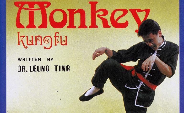 Drunken Monkey Kung Fu