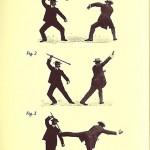 Walking Stick defensive move!