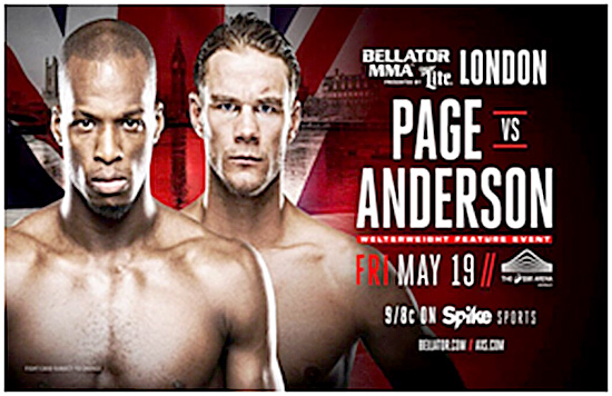 Bellator MMA 179 - Poster 2