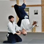 Martial Art of the Month -Aikido -Kung Fu Kingdom