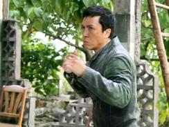 Top 10 Donnie Yen Movie Fight Scenes!
