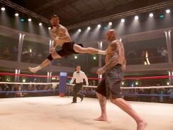 Top 10 Martial Arts Movies of 2016!