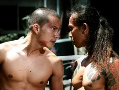 Yakuza Apocalypse Out May 2nd on DVD!