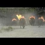 11 Village of Death Flaming Livestock