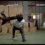 Capoeira style twisting kick