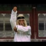 Challenge the mighty Hwang Jang lee..
