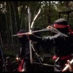 Ninjas everywhere