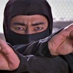 Revenge of the Ninja 1983 Kung Fu Kingdom 770x472