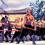 The 36th Chamber of Shaolin - Kung Fu Kingdom