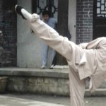 1979s Kung Fu Ace