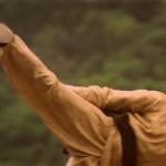 Liu developed his own martial arts system Zen Kwan Do
