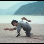 Chans classic cat claw fu beach workout
