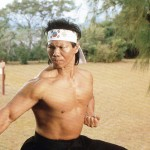 Bolo karate stance