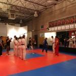 Its ACTION in Master Kens dojo