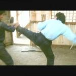 Ridley Tsui delivers a kick
