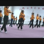 With the decline of Beijing Opera schools many modern stunt performers come from Chinese wushu schools 1