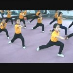 With the decline of Beijing Opera schools many modern stunt performers come from Chinese wushu schools 2