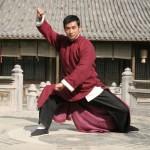 Mo Ma A still from the Master of Tai Chi