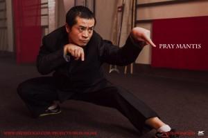 Vincent Wang does Mantis!
