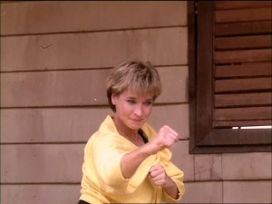Queen of Kung Fu Cynthia Rothrock