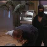 Leroy the ninja