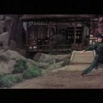 There are some nice kung fu forms