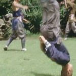 Ditanquan or Ground Tumbling Boxing