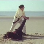 Master Chu cripples Master Wai