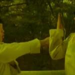 Master Chu gives Master Wais son a kung fu lesson
