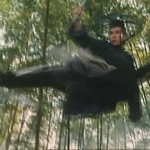 Donnie Yen doesnt need wires to impress