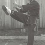 Elegant front kick