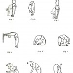 Useful stretching positions