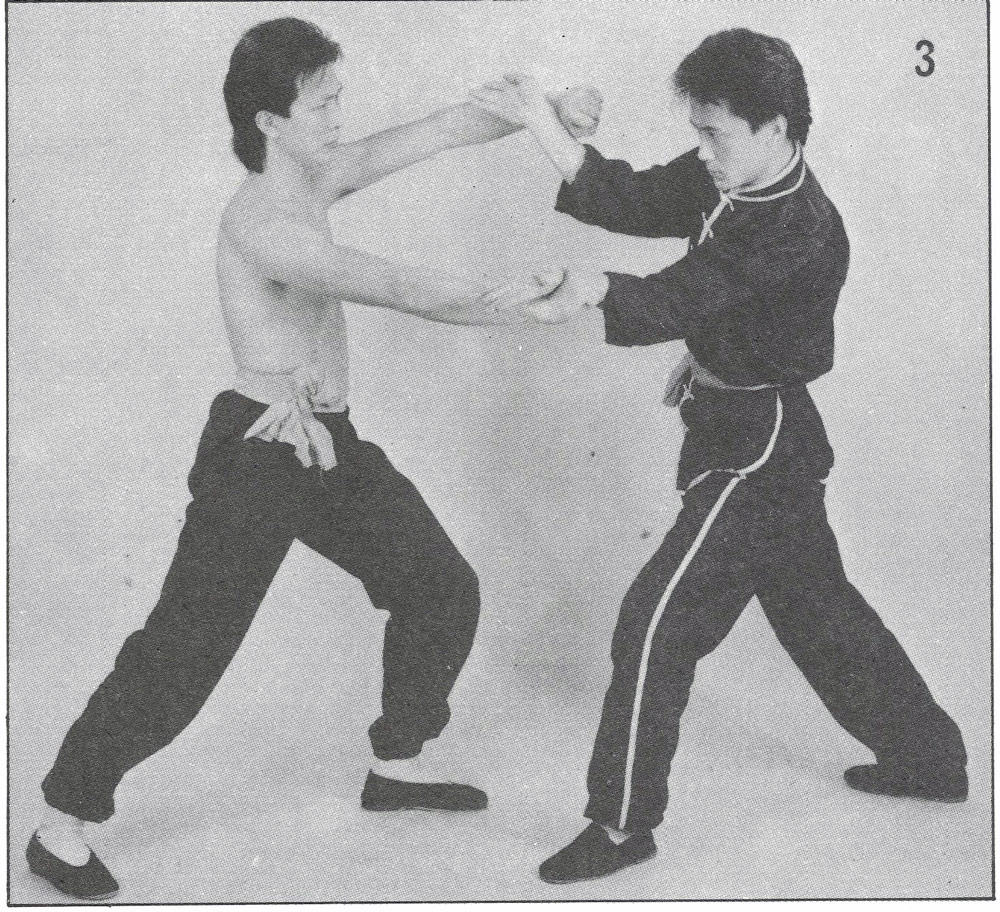 Kung fu monkey style techniques