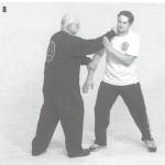 JKD punch