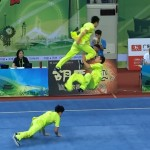 Duilian are spectacular choreographed wushu fighting sets