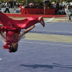 Wushu inlcudes techniques such as the aerial cartwheel