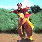 Chan Shan Kung Fu Kingdom new