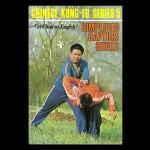 Simplified Capture Skills Kung Fu Kingdom 770x472 new3