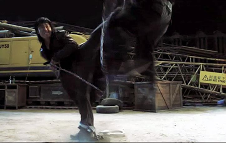 Wu Lin delivers a rib splitting side kick