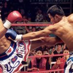 Beautiful Boxer Kung Fu Kingdom 770x472