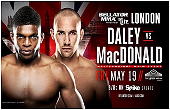 Bellator MMA 179 Press Conference Poster 1