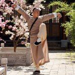 Master of the Shadowless Kick: Wong Kei-Ying (2017) - Kung Fu Kingdom