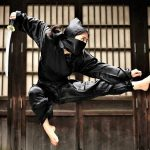 MAOTM Ninjutsu Kung Fu Kingdom 770x472