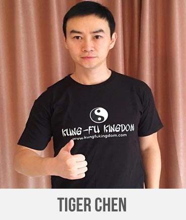 Tiger Chen - Kung Fu Kingdom