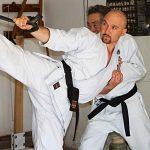 Interview with Dominiquie Vandenberg Kung Fu Kingdom 770x472