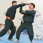 Stop, Police! Start Kung Fu! - Kung Fu Kingdom